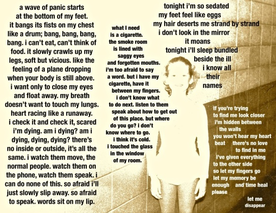 let me disappear / text (c) amy willans