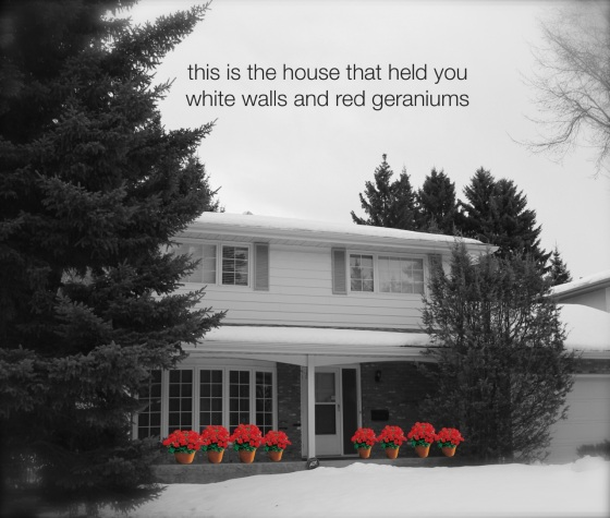 the house that held you